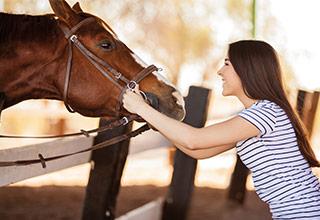 allsafe cavallo - Pferdehalterhaftpflichtversicherung - Frau mit Pferd
